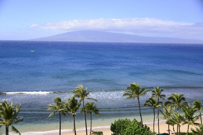 Cine nu ar vrea să se distreze pe gratis în Hawaii?