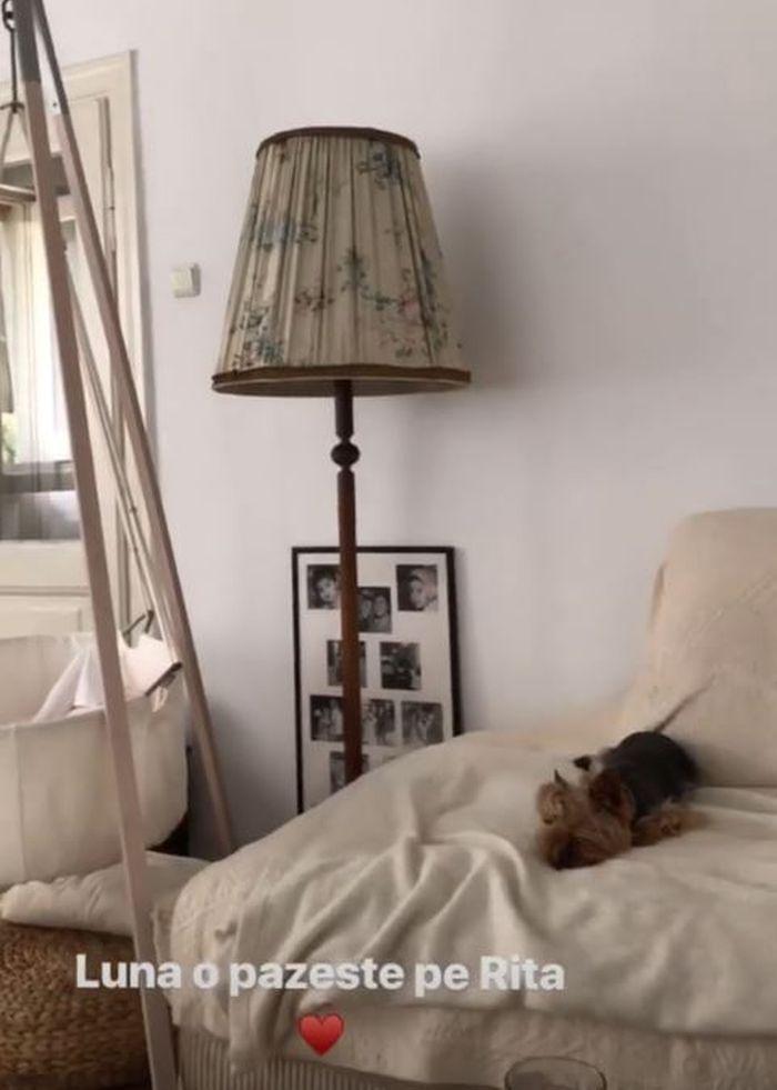Rita este supravegheată și de cățelul familiei