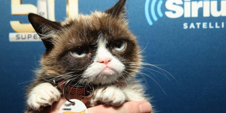 A murit Grumpy Cat
