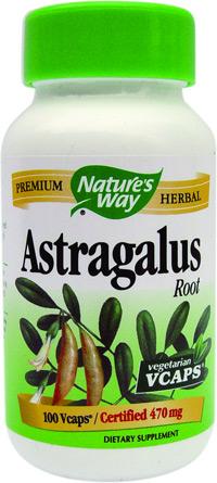 Astragalus de la Secom