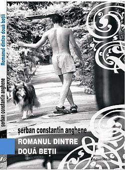 Romanul dintre doua batii, Serban Constantin Anghene